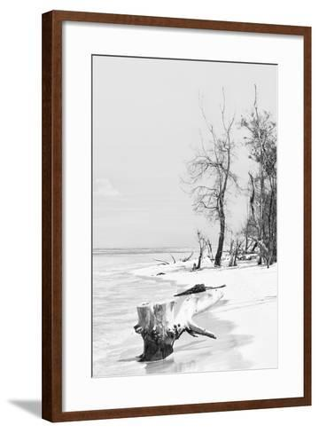 Cuba Fuerte Collection B&W - Wooden Beach II-Philippe Hugonnard-Framed Art Print
