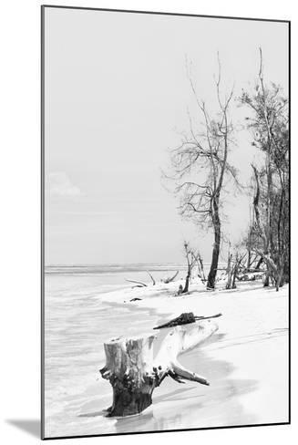 Cuba Fuerte Collection B&W - Wooden Beach II-Philippe Hugonnard-Mounted Photographic Print
