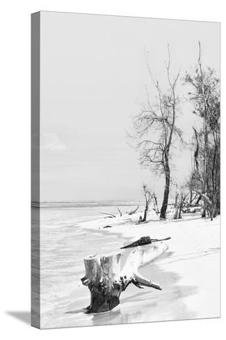 Cuba Fuerte Collection B&W - Wooden Beach II-Philippe Hugonnard-Stretched Canvas Print
