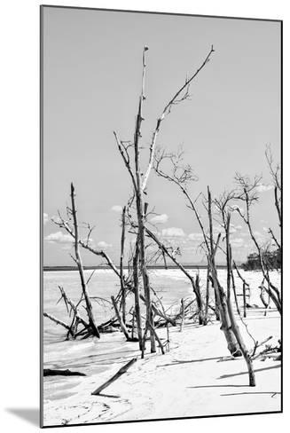 Cuba Fuerte Collection B&W - Desert of White Trees VI-Philippe Hugonnard-Mounted Photographic Print