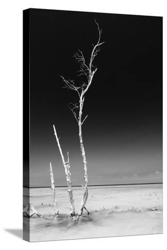 Cuba Fuerte Collection B&W - Alone in the Ocean IV-Philippe Hugonnard-Stretched Canvas Print