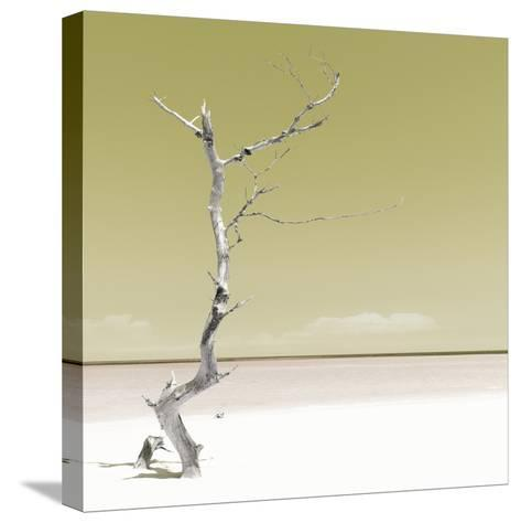 Cuba Fuerte Collection SQ - Alone on the White Sandy Beach - Pastel Yellow-Philippe Hugonnard-Stretched Canvas Print