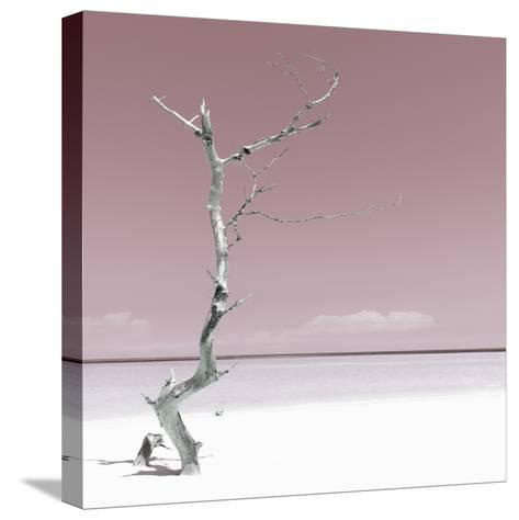 Cuba Fuerte Collection SQ - Alone on the White Sandy Beach - Pastel Red-Philippe Hugonnard-Stretched Canvas Print