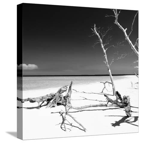Cuba Fuerte Collection SQ BW - Wild White Sand Beach-Philippe Hugonnard-Stretched Canvas Print
