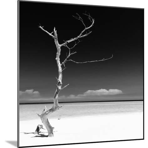 Cuba Fuerte Collection SQ BW - Alone on the White Sandy Beach-Philippe Hugonnard-Mounted Photographic Print