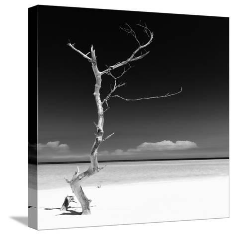 Cuba Fuerte Collection SQ BW - Alone on the White Sandy Beach-Philippe Hugonnard-Stretched Canvas Print