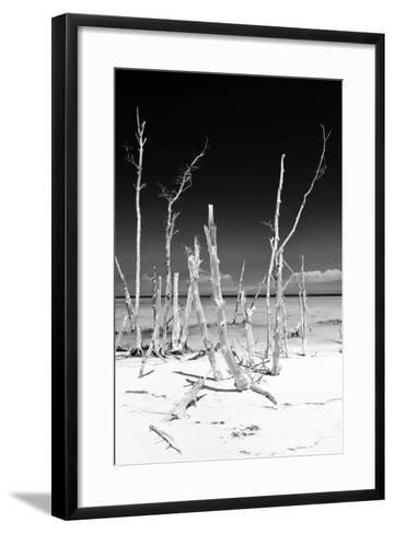 Cuba Fuerte Collection B&W - White Trees Beach III-Philippe Hugonnard-Framed Art Print