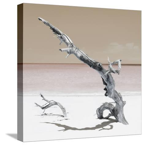 Cuba Fuerte Collection SQ - Solitary Tree - Pastel Orange-Philippe Hugonnard-Stretched Canvas Print