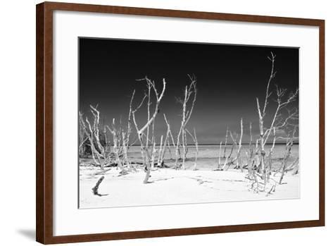 Cuba Fuerte Collection B&W - White Trees Beach IV-Philippe Hugonnard-Framed Art Print