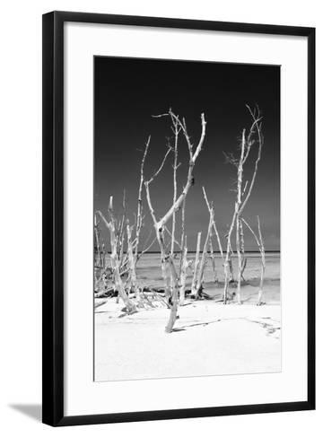 Cuba Fuerte Collection B&W - White Trees Beach V-Philippe Hugonnard-Framed Art Print