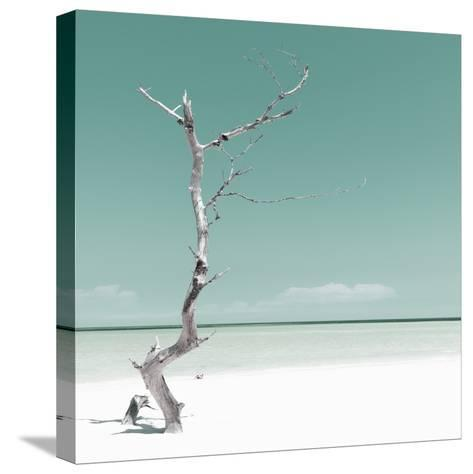 Cuba Fuerte Collection SQ - Alone on the White Sandy Beach - Pastel Green-Philippe Hugonnard-Stretched Canvas Print