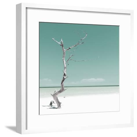 Cuba Fuerte Collection SQ - Alone on the White Sandy Beach - Pastel Green-Philippe Hugonnard-Framed Art Print