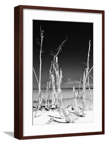 Cuba Fuerte Collection B&W - White Trees Beach II-Philippe Hugonnard-Framed Art Print