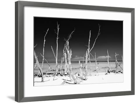 Cuba Fuerte Collection B&W - White Trees Beach-Philippe Hugonnard-Framed Art Print