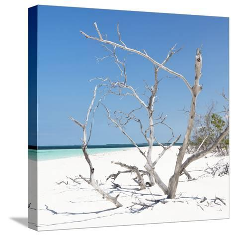 Cuba Fuerte Collection SQ - Tropical Beach Nature-Philippe Hugonnard-Stretched Canvas Print