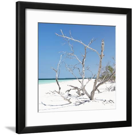 Cuba Fuerte Collection SQ - Tropical Beach Nature-Philippe Hugonnard-Framed Art Print