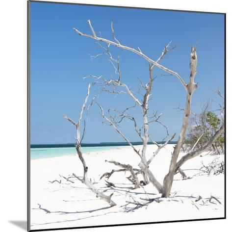 Cuba Fuerte Collection SQ - Tropical Beach Nature-Philippe Hugonnard-Mounted Photographic Print