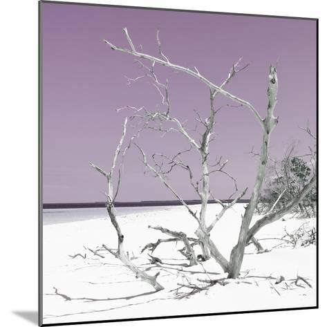 Cuba Fuerte Collection SQ - Tropical Beach Nature - Pastel Plum-Philippe Hugonnard-Mounted Photographic Print