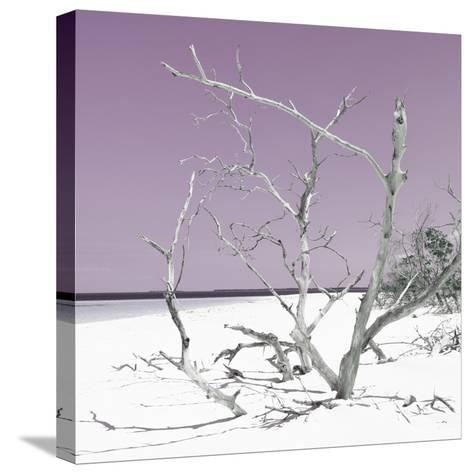 Cuba Fuerte Collection SQ - Tropical Beach Nature - Pastel Plum-Philippe Hugonnard-Stretched Canvas Print