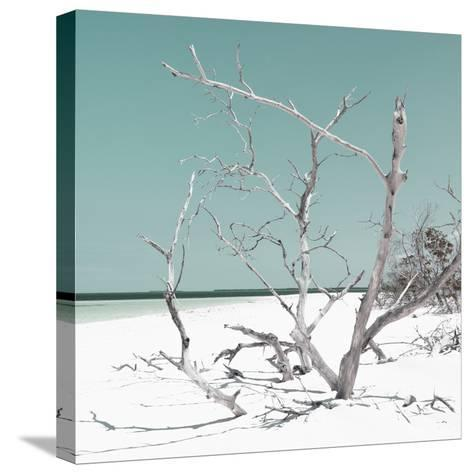 Cuba Fuerte Collection SQ - Tropical Beach Nature - Pastel Coral Green-Philippe Hugonnard-Stretched Canvas Print