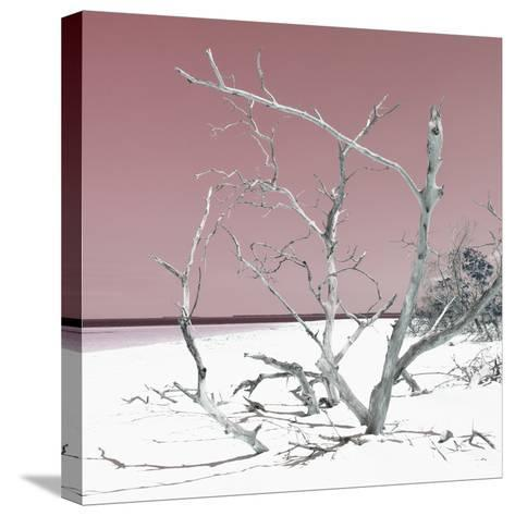 Cuba Fuerte Collection SQ - Tropical Beach Nature - Pastel Red-Philippe Hugonnard-Stretched Canvas Print