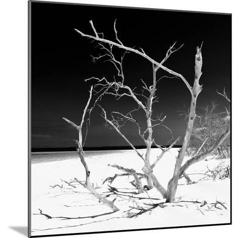 Cuba Fuerte Collection SQ BW - Tropical Beach Nature-Philippe Hugonnard-Mounted Photographic Print