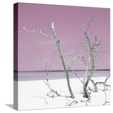Cuba Fuerte Collection SQ - Pink Stillness-Philippe Hugonnard-Stretched Canvas Print
