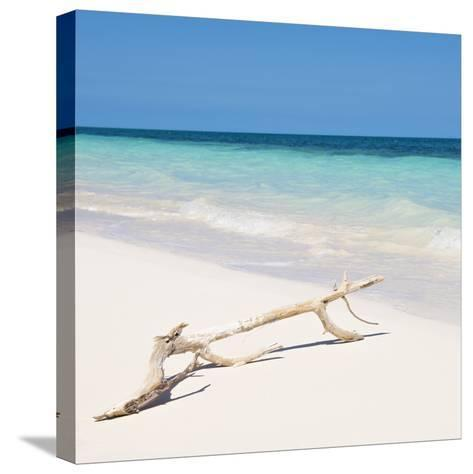 Cuba Fuerte Collection SQ - Natural Wild Beach-Philippe Hugonnard-Stretched Canvas Print