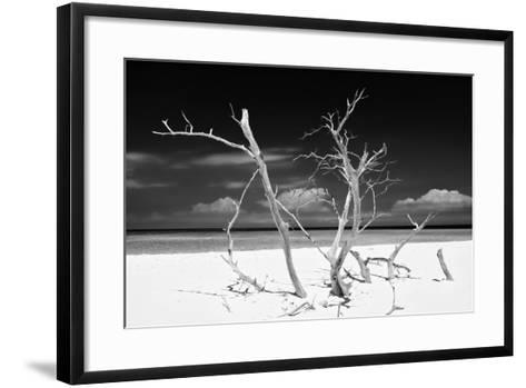 Cuba Fuerte Collection B&W - Trees and White Sand V-Philippe Hugonnard-Framed Art Print