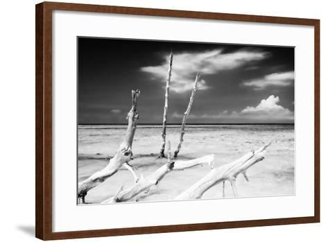 Cuba Fuerte Collection B&W - Trees and White Sand XI-Philippe Hugonnard-Framed Art Print