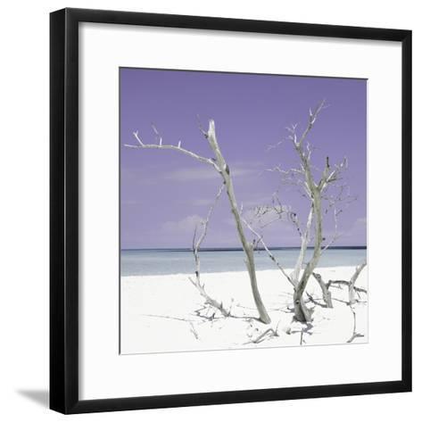 Cuba Fuerte Collection SQ - Purple Stillness-Philippe Hugonnard-Framed Art Print