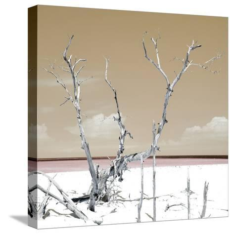Cuba Fuerte Collection SQ - Dark Yellow Serenity-Philippe Hugonnard-Stretched Canvas Print