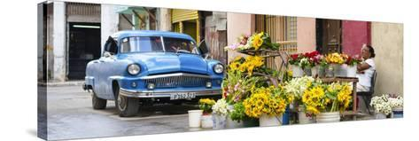 Cuba Fuerte Collection Panoramic - Sunflowers Havana-Philippe Hugonnard-Stretched Canvas Print
