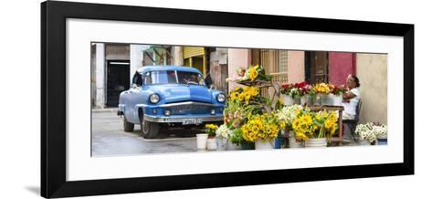 Cuba Fuerte Collection Panoramic - Sunflowers Havana-Philippe Hugonnard-Framed Art Print