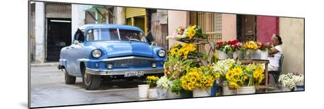 Cuba Fuerte Collection Panoramic - Sunflowers Havana-Philippe Hugonnard-Mounted Photographic Print