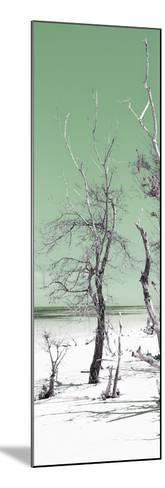 Cuba Fuerte Collection Panoramic - Olive Summer-Philippe Hugonnard-Mounted Photographic Print