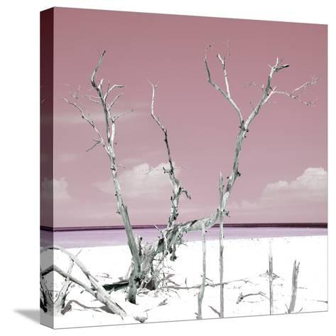 Cuba Fuerte Collection SQ - Hot Pink Serenity-Philippe Hugonnard-Stretched Canvas Print