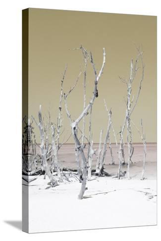 Cuba Fuerte Collection - Wild White Sand Beach II - Pastel Dark Yellow-Philippe Hugonnard-Stretched Canvas Print