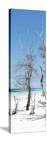 Cuba Fuerte Collection Panoramic - Blue Summer-Philippe Hugonnard-Stretched Canvas Print
