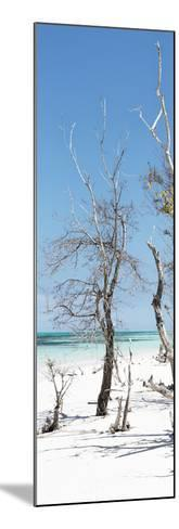 Cuba Fuerte Collection Panoramic - Blue Summer-Philippe Hugonnard-Mounted Photographic Print