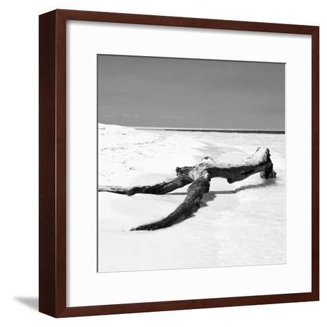 Cuba Fuerte Collection SQ BW - Black Tree on the Beach-Philippe Hugonnard-Framed Art Print