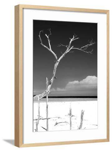 Cuba Fuerte Collection B&W - Trees and White Sand III-Philippe Hugonnard-Framed Art Print