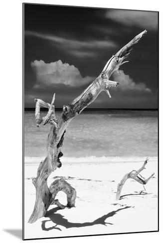 Cuba Fuerte Collection B&W - Trees and White Sand X-Philippe Hugonnard-Mounted Photographic Print