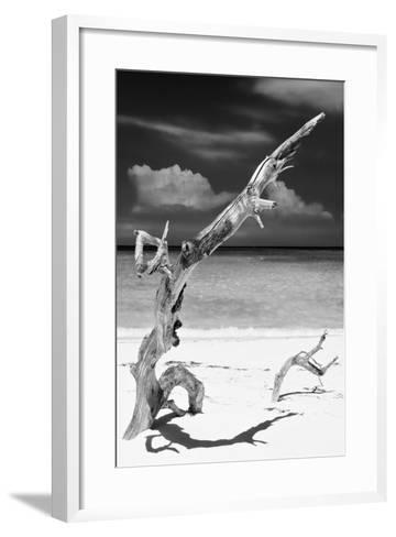 Cuba Fuerte Collection B&W - Trees and White Sand X-Philippe Hugonnard-Framed Art Print