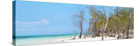 Cuba Fuerte Collection Panoramic - White Sand Beach-Philippe Hugonnard-Stretched Canvas Print
