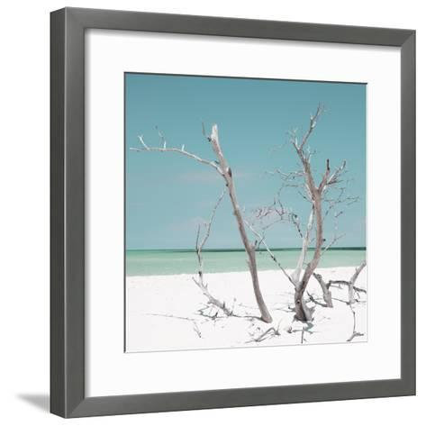 Cuba Fuerte Collection SQ - Coral Green Stillness-Philippe Hugonnard-Framed Art Print