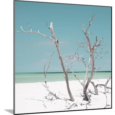 Cuba Fuerte Collection SQ - Coral Green Stillness-Philippe Hugonnard-Mounted Photographic Print