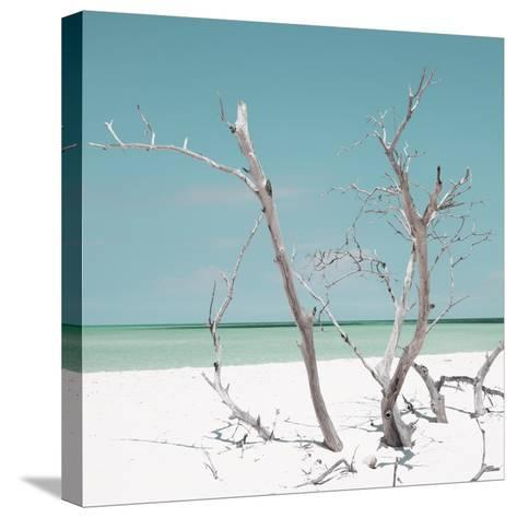 Cuba Fuerte Collection SQ - Coral Green Stillness-Philippe Hugonnard-Stretched Canvas Print