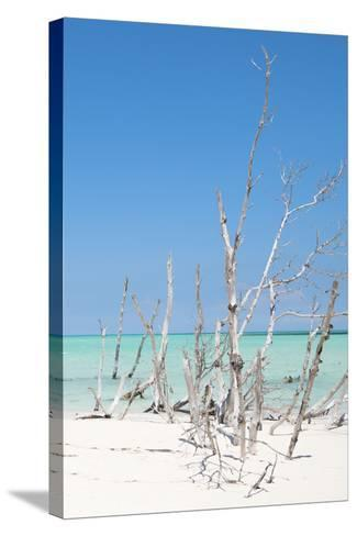 Cuba Fuerte Collection - Wild White Sand Beach III-Philippe Hugonnard-Stretched Canvas Print