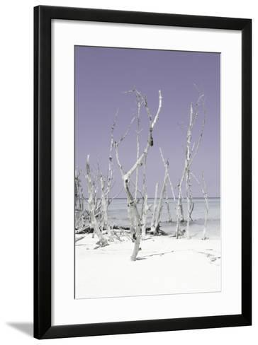 Cuba Fuerte Collection - Wild White Sand Beach II - Pastel Mauve-Philippe Hugonnard-Framed Art Print